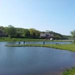 Ny sø